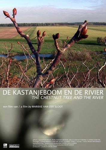 DVD De kastanjeboom en de rivier